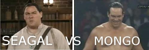 mongo_vs_seagal